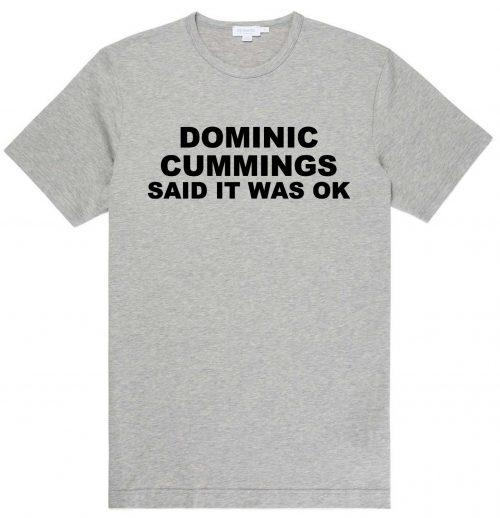 Dominic Cummings Said It Was OK T Shirt - Grey